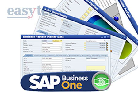 Corso di formazione su SAP Business One